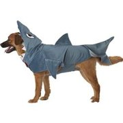 costume of pet shark