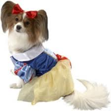 dog snow white costume