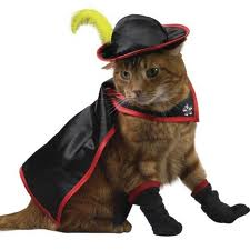 puss-in-boots-halloween-costume for cats